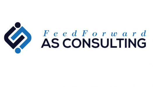 FEEDFORWARD AS CONSULTING